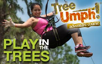 Swing by TreeUmph!